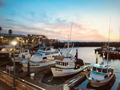 Boats of King Harbor