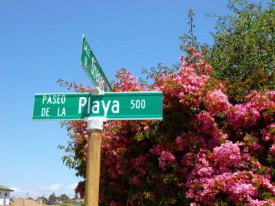 Paseo-De-La-Playa